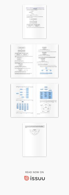 organigramas informativo