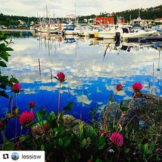 "Boats above the sky..or so it seems. #reiseliv #reisetips #reiseblogger #reiseråd  #Repost @lessisw (@get_repost)  ""The World is like a Mirror it returns the Mirror Image"" (William Makepeace Thackeray) Good Evening Friends Loc; Harstad Marina #igw_skyline #ig_world_photo #ig_nordnorge"