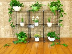 You can make 6 storage cubes. - 23 modern storage grids x cm). Wire Storage, Cube Decor, Storage Rack, Metal Grid, Garden Shelves, Storage Grids, Cube Storage, Metal Storage Racks, Wire Storage Shelves