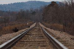 Viagem de Estudos - Diário do Queijo. Indo para Vermont, USA.