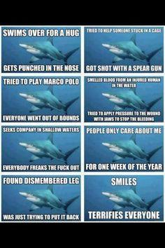 Sharks are very misunderstood. Pediatric Dentist St. Louis - pediatric dentist in St. Louis, MO @ www.kidsdentistry.com