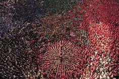 """Members of the """"Colla Vella Xiquets de Valls"""" human tower team form a """"castell"""" during the XXV human towers, or castells, competition in Tarragona on October 5, 2014."""