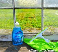 s your totally doable 31 day plan to a clean home, cleaning tips, home decor, Day 7 Clean windows with dish soap
