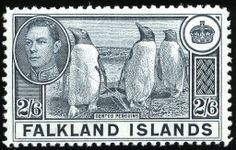 Falkland Islands 1938 SG 160 Fine Mint Scott 93 Other British Commonwealth Empire and Colonial Stamps here Crown Colony, Rare Stamps, Anglo Saxon, King George, British History, Mail Art, Stamp Collecting, My Stamp, Postage Stamps