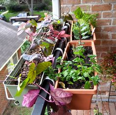 Vertical Gardener: Stagger Flower Box Holders to Maximize Railing Space.  This is what I might need to do on our balcony, now that the rail is too narrow to hold my pots.