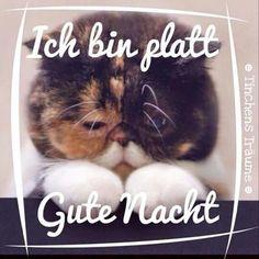 Wünsche all meinen FB Freunden auch eine Gute Nacht und süße Träume - http://guten-abend-bilder.de/wuensche-all-meinen-fb-freunden-auch-eine-gute-nacht-und-suesse-traeume-115/