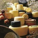 Lesbos | Greece  Cheeses of Lesvos  lesbos-eiland.webs.com