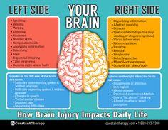 Left side vs. right side of brain   brain injury or stroke