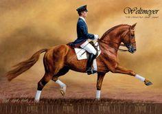 The legendary German stallion Weltmeyer