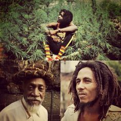 *The Wailers* More fantastic pictures and videos of *Bob Marley & The Wailers* on: https://de.pinterest.com/ReggaeHeart/