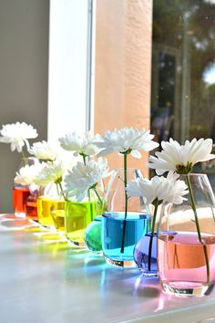 Instead of choosing colorful flowers, try placing a white variety like mums or daisies in vases with colored water.