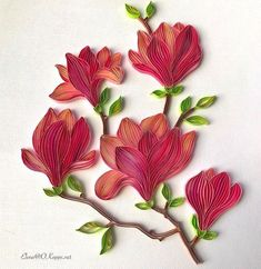 #quilling #paper #magnolia #flowers #handmade #card #floral