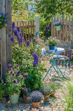 Sitzecke Country Cottage Garden, Cottage Garden Design, Small Garden Design, Small Courtyard Gardens, Small Gardens, Outdoor Gardens, Small Mediterranean Garden Ideas, Dame Nature, Narrow Garden