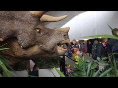 3D-Printed Dinosaur Invades Paris Train Station - YouTube Concord Music, Train Station, 3d Printing, Lion Sculpture, Creatures, Statue, Paris, Printed, Impression 3d