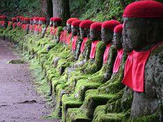 beautiful japanese shrines #japan #japanese #photograph