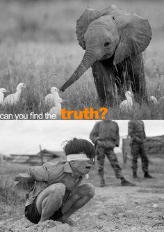 better a cruel truth than a comfortable delusion. #graphistsfortruth  goo.gl/QWW5NI