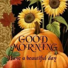 Good Morning Have a Beautiful Day pumpkin greetings good morning good morning greeting good morning quote good morning poem good morning blessings good morning friends and family good morning coffee autumn good morning fall good morning