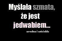 Cytaty na Stylowi.pl Scary Funny, Wtf Funny, Funny Lyrics, Me Quotes, Funny Quotes, Sad Life, My Guy, Man Humor, Motto