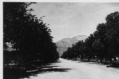 looking north on unpaved Euclid Avenue, early 1900s