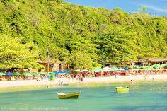 Imagem da linda Praia da Tartaruga e sua preservação. Búzios - RJ