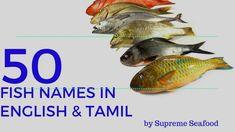 Fish names in English Tamil 50 varieties By Supreme . Pacific Fish, Sushi Plush, Animals Name In English, Goldfish Types, Restaurant Fish, Fish Chart, Oscar Fish, Fish List, Live Aquarium Fish
