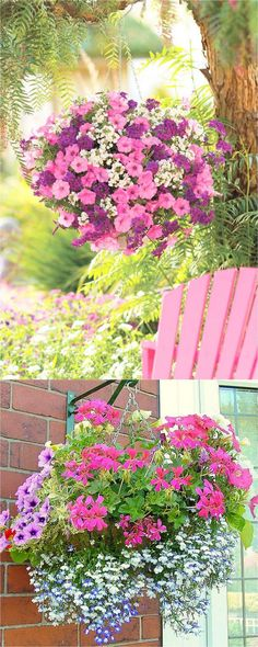 How to Plant Beautiful Flower Hanging Baskets ( & 15 Best Plant Lists) - A Piece Of Rainbow