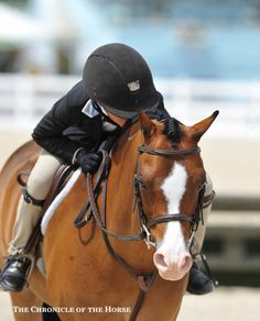 Photo by Molly Sorge Lots Of Love Mimi Gochman gave Rafael a kiss after they finished up their second-placed small pony hunter round. | The Chronicle of the Horse