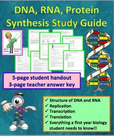 This five-page student study guide will help your students master the structure and function of DNA and RNA, replication, transcription, and translation.  Three-page answer key included.