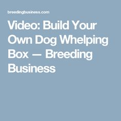 Video: Build Your Own Dog Whelping Box — Breeding Business