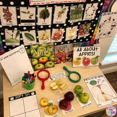 How to set up the Science Center in your Early Childhood Classroom – Pocket of Preschool - Kinderspiele Apple Activities, Autumn Activities, Science Activities, Science Fun, Physical Science, Earth Science, Science Nature, Science Center Preschool, Science Area