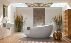 bathroom wood floor and stone wall accent