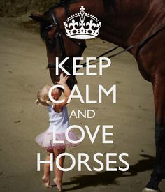 KEEP CALM AND LOVE HORSES - by me JMK