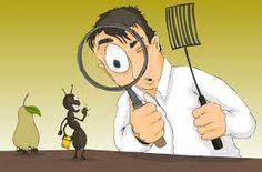 أذا كنت تعانى من الحشرات المزعجة و استخدمت المبيدات الضارة التى اثرت على صحتك و لم تقضى على الحشرات تقدم لك شركة صقر البشاير خدمة مكافحة حشرات بمكة باستخدام  المبيدات التى لا تضر بصحتنا و تقضى تماما على الحشرات اتصل بنا على 0500941566