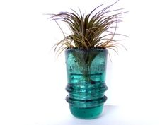 Vintage Glass Insulator Housing Air Plant by airyobsessions