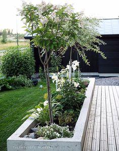 - Lilly is Love Back Gardens, Outdoor Gardens, Garden Cottage, Home And Garden, Jardin Decor, Balcony Garden, Dream Garden, Garden Planning, Garden Projects