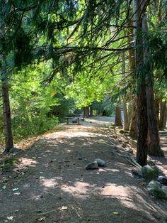 Scenery, Country Roads, Landscape, Paisajes, Nature
