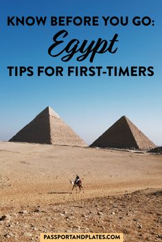 Headed to Egypt? This first timer's guide includes ALL the Egypt travel tips for the first time visitor: everything you should know before visiting Egypt. Travel Advice, Travel Guides, Travel Tips, Travel Abroad, Egypt Travel, Africa Travel, Africa Destinations, Travel Destinations, Paises Da Africa