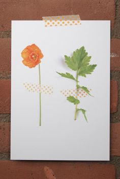 Print photoprint  orange poppy  oranje klaproos  € 9,95