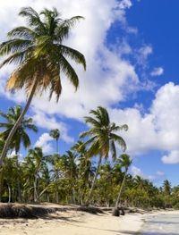 St Maarten Shore Excursion: Orient and Maho Beach Half-Day Tour #caribbeancruises #stmaarten
