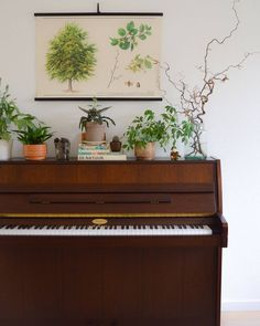 Play it again Sam! The beautifully styled piano belongs to at{mine} member Cakes and Lemonades.Talk about plant goals! #atmine by atmine