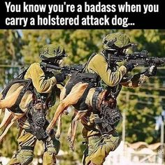 You know you're a badass when you carry a holstered attack dog. Hunters?   http://www.sonsoflibertytees.com