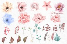 Watercolor wedding flowers by LeCoqDesign on @creativemarket