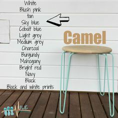 Camel goes with...