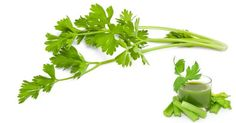 Celery is 95% water, very alkaline and full of fiber. We all know its weight loss benefits but you will be surprised at its other amazing health properties. Celery is a superfood that should be taken daily. There are an amazing amount of health benefits you can get from celery that many people are not […]