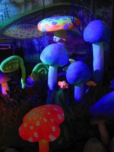 Mushroom Forest in Blacklight