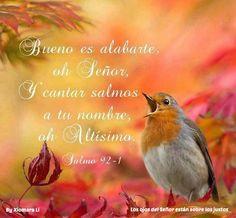 Los ojos del Señor están sobre los justos...Salmos 92:1