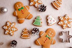 For many people, the festive season is filled with food temptations that often leave us feeling stuffed, bloated, and guilty about poor choices. That does not have to be the case. Whip up some healthy treats this season with some Clean Lean Protein! Easy Gingerbread Recipe, Gluten Free Gingerbread Cookies, Gingerbread Cake, Christmas Gingerbread, Christmas Cookies, Like Water For Chocolate, Types Of Candy, Food Combining, Dairy Free Options