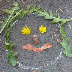 Nature Faces! ... I remember doing this as a kid. Out in the garage my dad gave us each a piece of hardboard. We'd use leaves, walnuts, and sticks plus any odds and ends of bolts and things that dad gave us to play with. We were entertained for hours making and remaking our temporary art! :] great for stimulating kids' imaginations