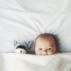 Peekaboo! This little babe and his raccoon BFF have us wanting to get back in bed for snuggle time. Gorgeous photo by @jodieemarieee. Check out Max the Raccoon and all of his animal friends on noblecarriage.com