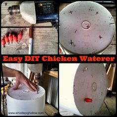 To date, our favorite chicken waterer is a five-gallon bucket with several nipples attached to the bottom. Think hamster waterer, but larger and with more places to drink from. There is no water waste at all with this method, so refilling the bucket is not an everyday occurrence. When we used our previous watering system, …